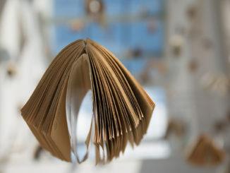 cnosfap veneto regione veneto apre bando per contributo buono libri