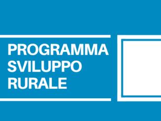 La pubblicazione nel BUR della Regione del Veneto è prevista verso la metà di gennaio. 8 le aree di intervento previste dal bando.