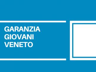 La rete dei servizi per l'impiego del Veneto ha erogato complessivamente più di 64 mila attività, di cui 21.288 nell'ambito della formazione.