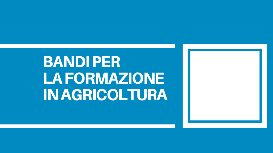 Dal 3 luglio nuovi bandi per finanziare la formazione in agricoltura e altri interventi nelle aree montane e forestali.